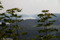 Utsikt  vid Seatons kulle