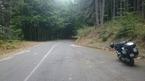 V.30.Nationalparken Sila i Calabrien. Mycket ödsligt...Rolf Nilsson