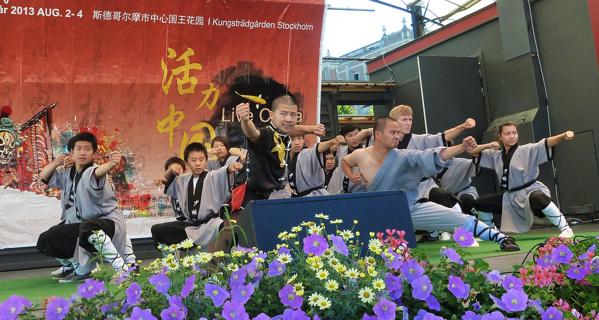 SWI på Stockholm Kung fu festival i Kungsan 2-4 augusti 2013