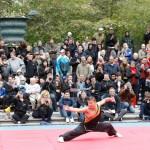 Weitao Sthlm Kung fu festival 2011