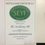 Seyf certifierad skola