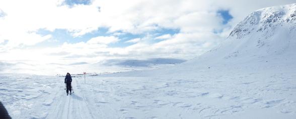 Lofsdalen 2013