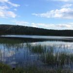 Idre sommar 8 (Fiske)