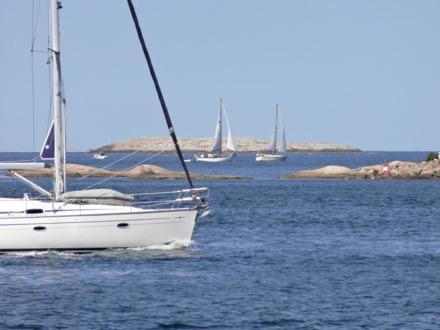 Sommarbilder. Foto Jan Mattsson