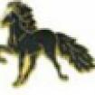 Pins - Pins svart häst