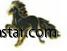 pins svart häst