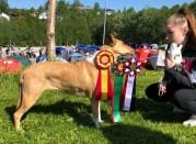 Noia blir ny Champion