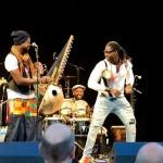 Baobab Festival