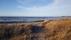Glommens strand(2)