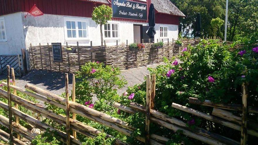 Bed & Breakfast i Olofsbo längs Kattegattleden mellan Falkenberg och Glommen. Familjärt och charmigt boende på Augustas B&B
