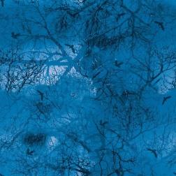 Digitaltryckt bomullstrikå - Himmel blå