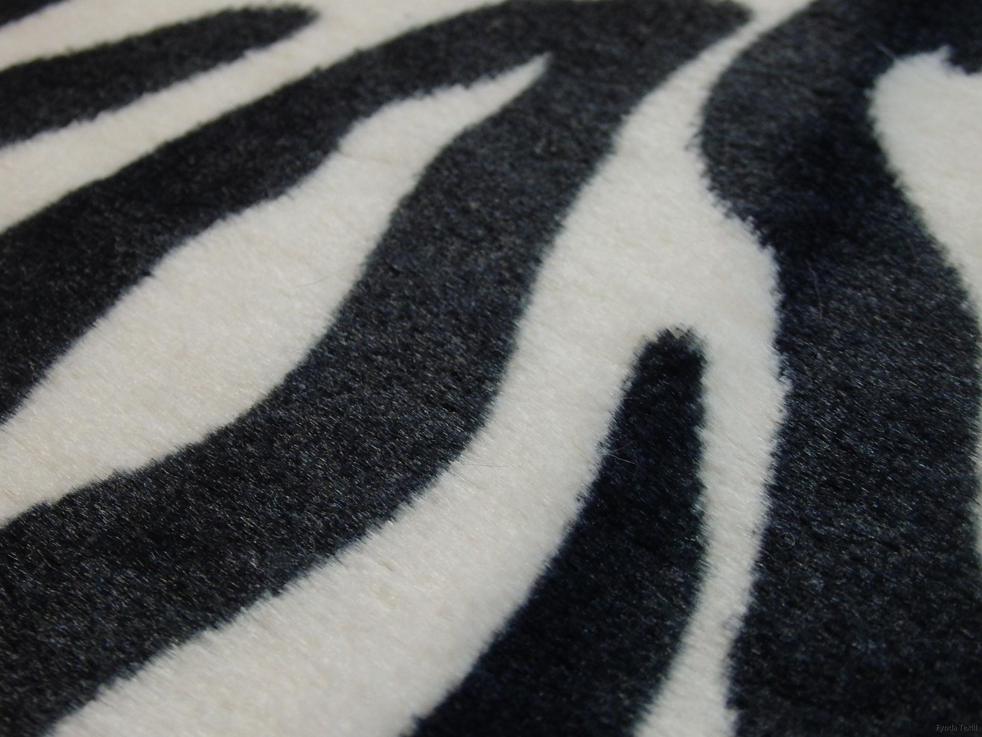 Svart-vit zebra