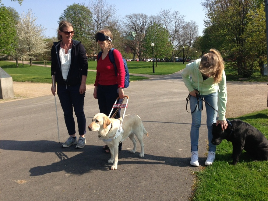 Fodervärd på besök med sin hund, får prova att gå mörklagt med labradoren Thea. Instruktör Jennie hjälper till.