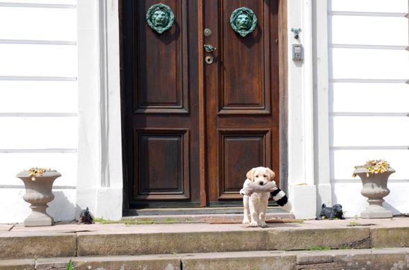 Kato står på trappan med sin lilla skunk i munnen, väntar på att kallas in.