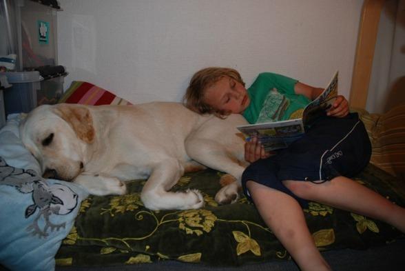 Att känna närhet med en hund ökar lusten även för läsning visar forskning.