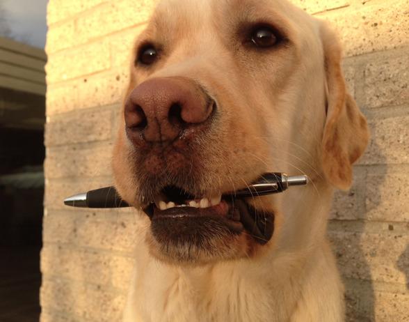 Pompe apporterar en penna så matte kan skriva en faktura :).