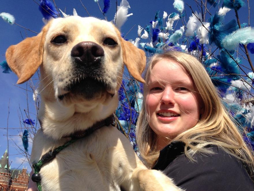 Nu har Lea kommit med tåget och ska arbetstestas hos DISA för att se om hon kan bli en assistanshund.