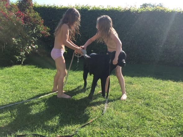 Nu är sommaren här och varma hundar får hjälp att svalka sig med vattenspridaren...:)