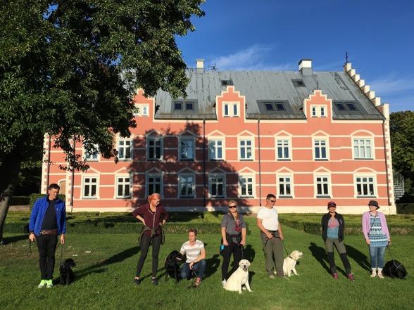 DISA ordnar alltid hundträffar/kurs för sina fodervärdar. På bilden ett gäng med labbar och fodervärdar i olika åldrar i träning med vackra Pålsjö slott i bakgrunden.