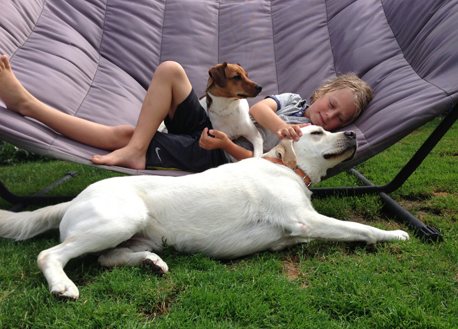 A boy in a hammock with a Labrador by his side.