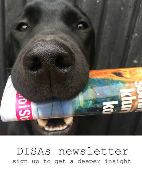Sign up for DISAs newsletter - get a deeper insight