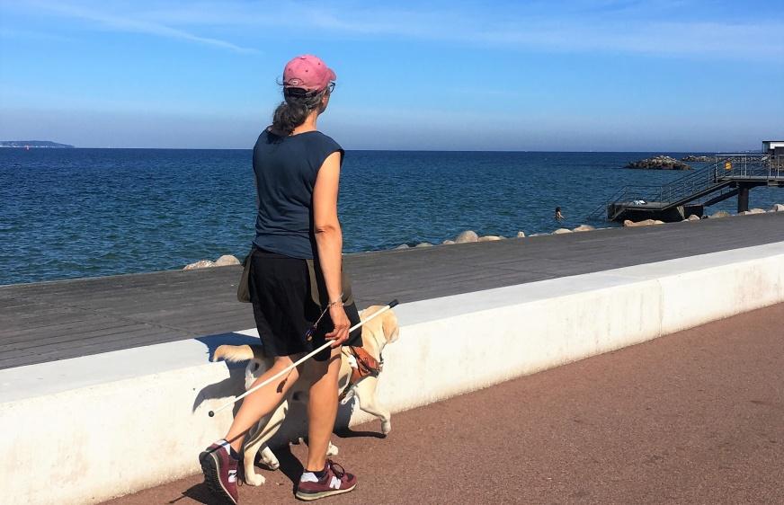 Anette jobbar med en gul labrador i ledarhundssele längs havet i Helsingborg.