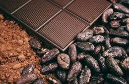 Chokladprovning - aktivitet för konferens, kickoff, möhippa, svensexa & kompisgäng - Lögnäs Gård utanför Laholm & Båstad