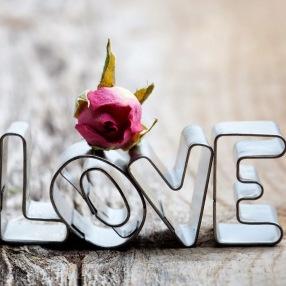 Alla Hjärtan LOVE