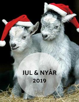 Jul & Nyår på Hotell & SPA Lögnäs Gård mellan Lahom och Båstad i södra Halland