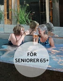 Erbjudande för seniorer 65 + på Hotell & Spa LÖgnäs Gård