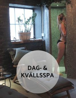 DagSPA på Hotell & SPA Lögnäs Gård utanför Laholm i södra Halland