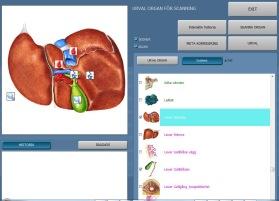 Oberon har mer än 500 objekt att skanna. Organ och funktioner i kroppen.