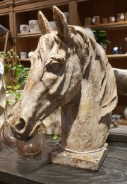 Horse Head Titan -