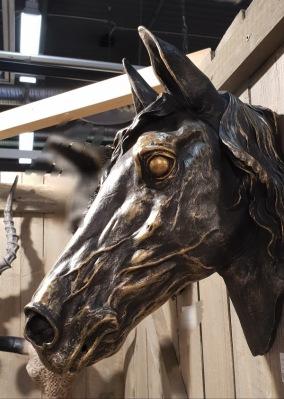 Horsehead Wall - hästhuvud