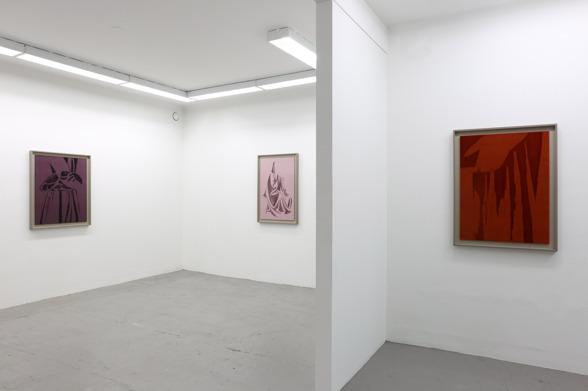 David Svensson. Soloshow - Drapings. Installationsbild
