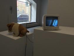 I Never Had Hair On My Body Or Head. 1995. Teddybear, surveillance camera, monitor