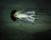 Anneè Olofsson. Mourning-160x125cm. Foto.