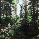 Skog Yxsjön