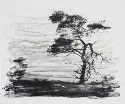 Lisa Strömbeck. De sista träden 2017