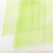 00159 Quaestio IIb green copy