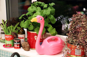 Vattenkanna Flamingo - Vattenkanna Flamingo