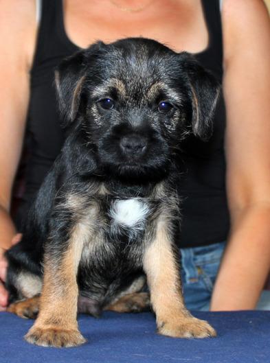 Alvin 2012-08-17