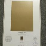Guldbladet 2013, för formgivning av Experience Byrå:  Plaza Publishing Group