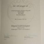 AAA i kreditvärdighet Lotsatorgruppen i Sverige 2008