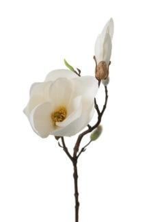 Konstväxt Magnolia vit -