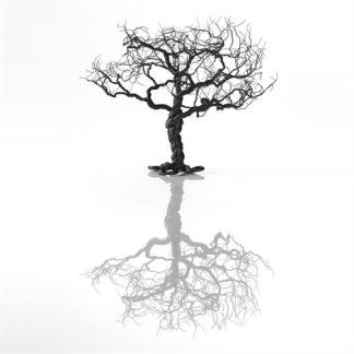 Noahs träd - Noahs träd 12cm