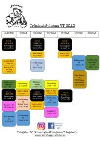 SCHEMA VT 2020