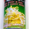 Aroy-D Bean Sprout in Brine 400g