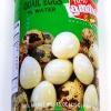 New Lamthong Quail Eggs