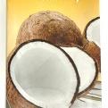 Chaokoh Coconut Cream 1liter
